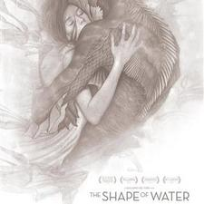 Event_shape_of_water